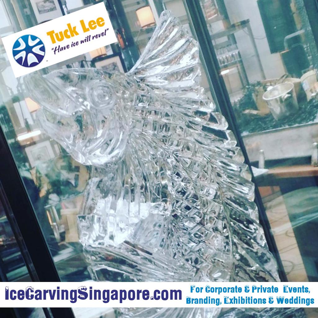 Ice fish sculpture (Natural ice art)